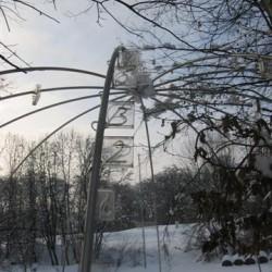 Ziffern im Wald