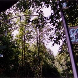 Ziffern im Wald, Detail