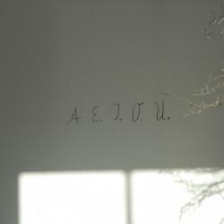 A.E.I.O.U., Wandaufschrift im Inneren