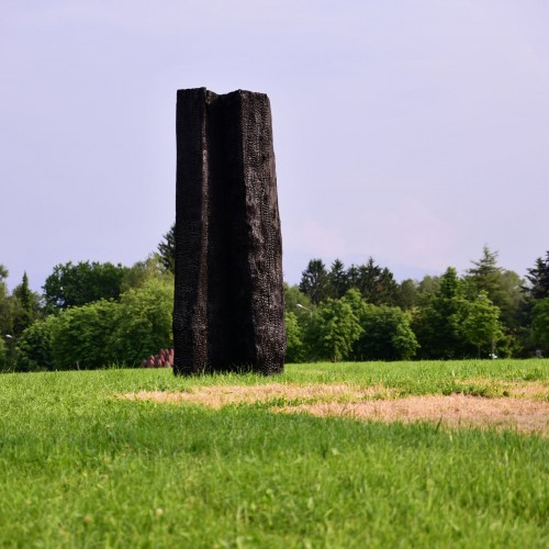 David Nash, Black Trunk / Foto: Manfred Siebinger